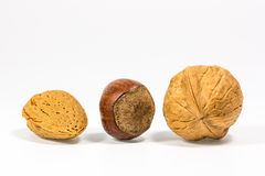 Three nuts Royalty Free Stock Image