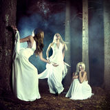 Three nymphs in the forest. Portrait of three beautiful nymphs in misty forest Royalty Free Stock Photos