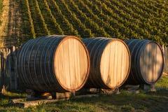 Three oak barrels in vineyard Royalty Free Stock Photo