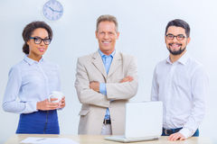 Three office colleagues are posing on the camera Royalty Free Stock Photo