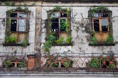 Three old broken overgrown windows. Old building facade with broken and overgrown windows. Small fence Stock Photo