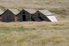 Three Old Country Barns. Three wooden barns falling apart in the country Stock Image