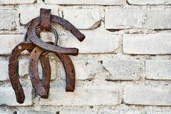 Three old rusty horsheshoe on white brick wall. Stock Photo