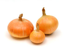 Three onion Royalty Free Stock Photos