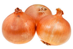 Three onion bulbs Royalty Free Stock Images