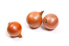 Three onion bulbs isolated on white background Stock Photography