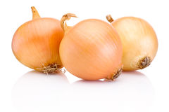 Three onion bulbs  on white background Stock Images