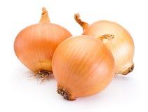 Three onion bulbs  on white background Stock Image