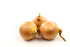 Three onions Stock Photography