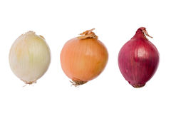 Three Onions (Allium cepa) Stock Photo