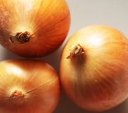 Three onions Royalty Free Stock Photos