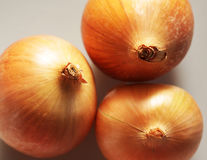 Three onions Stock Image