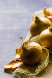 Three onions on hessian against a blue background with copy space. Royalty Free Stock Images