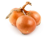Three onions isolated Stock Image