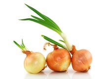 Three onions isolated Royalty Free Stock Images