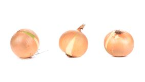 Three onions. Royalty Free Stock Image