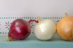 Three Onions Stock Images