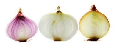 Three onions  on white background Stock Photos