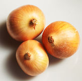 Three onions Stock Photos