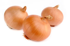 Three onions on white background Royalty Free Stock Photos