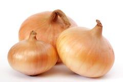 Three onions Stock Photography