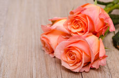 Three orange flowers of roses Royalty Free Stock Photos