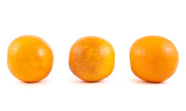 Three orange fruits isolated Royalty Free Stock Photography