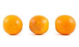 Three orange fruits isolated Royalty Free Stock Photography