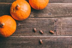 Three orange pumpkins and acorns on wooden background royalty free stock photo