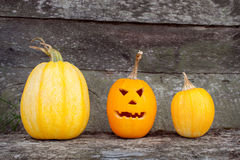 Three orange pumpkins on Halloween. Three small pumpkins on Halloween stock image