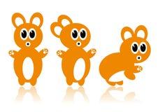 Three orange rabbits Stock Photos