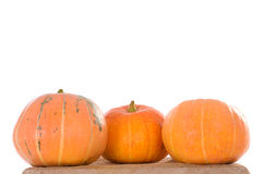 Three orange ripe pumpkins Royalty Free Stock Images