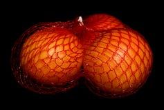 Three oranges Stock Image