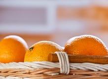 Three oranges Royalty Free Stock Photo
