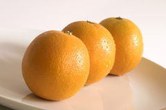 Three oranges. With drops of water on a white dish Stock Photography