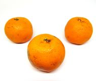 Three oranges Stock Image
