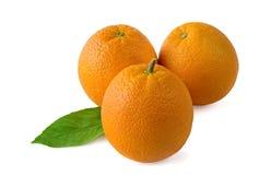Three oranges on a white background stock photo