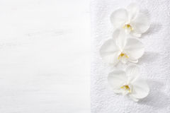 Three orchids and white terry towel Royalty Free Stock Images