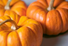 Three Ornamental Pumpkins Stock Photos