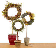 Three ornamental topiaries on a plank Stock Image