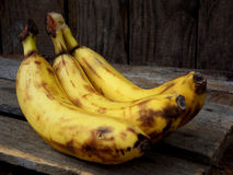 Three overripe bananas on a dark wooden background. selective focus. Royalty Free Stock Images