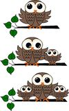Three owl illustrations Royalty Free Stock Photo