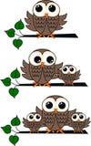 Three owl illustrations royalty free stock photo