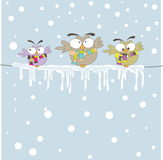 Three owl on the rope. Vector illustration Royalty Free Stock Image