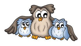 Three owls. Color illustration of three owls, one big and two small vector illustration