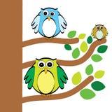 Three owls Royalty Free Stock Photos