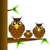 Three owls sit on a tree on a white background Royalty Free Stock Photo