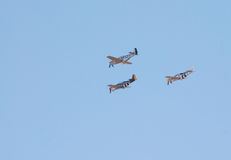 Three P-51 Mustang fighter planes fly in formation Royalty Free Stock Photo