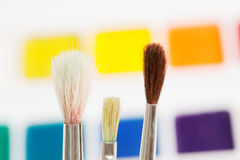 Three paintbrushes against paints Royalty Free Stock Images