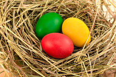 Three painted Easter eggs on the hay. Three painted in green, red, yellow Easter eggs on the hay Stock Photos